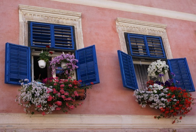 Romania Window Flowers