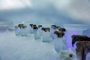 Planning a trip to Finnish Lapland Ice Hotel