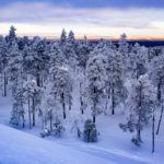 Snowshoeing in Luosto Finland and Its Wonderful Winter Wilderness