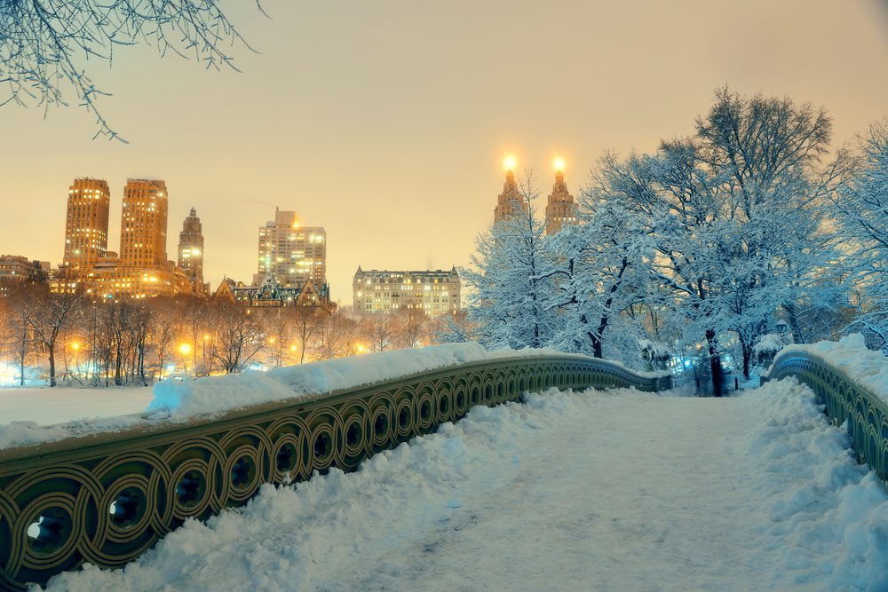 Central Park winter New York City