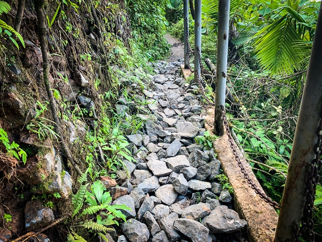 El Yunque hiking in Puerto Rico
